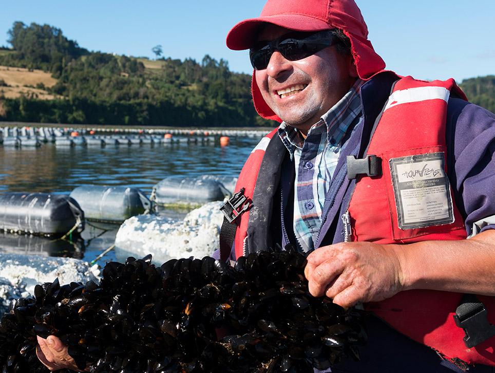 landes-bg-content-landes-mussels_03